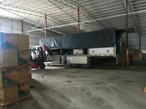 Gạch Nhập Khẩu 600x1200mm VIP612019-1