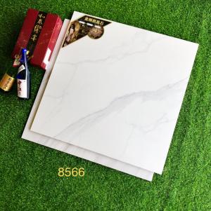 Gạch Nhập Khẩu 800X800mm 8586
